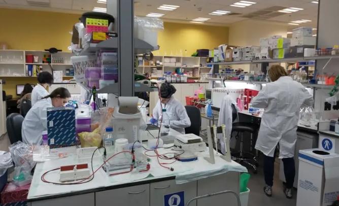 Científicos israelíes: La vacuna contra el coronavirus se probará en humanos antes del 1 de junio – Por Maayan Jaffe-Hoffman y Aaron Recih (Jerusalem Post)