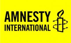 Amnistía Internacional y la guerra de información librada por Qatar - Por Irina Tsukerman (BESA)