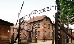 Los árabes y el Holocausto - Por Dr. Edy Cohen (BESA)