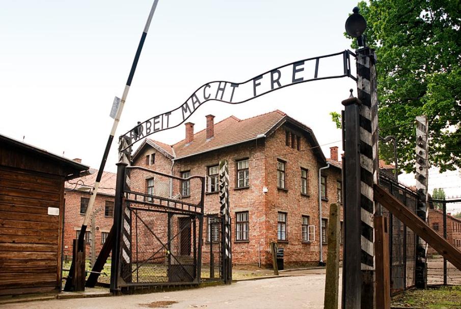 Los árabes y el Holocausto – Por Dr. Edy Cohen (BESA)