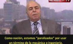 """Investigador egipcio critica la antigua jurisprudencia islámica: """"Idiotez y Locura"""""""