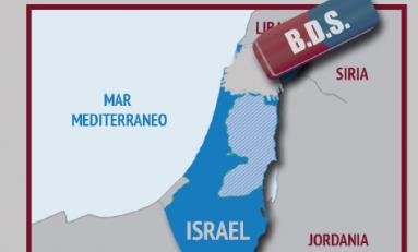 Libro de bolsillo B.D.S. contra Israel