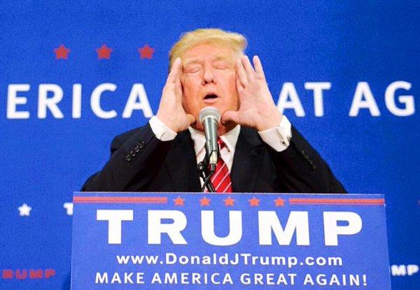 Daniel Pipes: Trump no mira a la Hermandad Musulmana como Obama; espero que sea prohibida – Por Abdelaziz Al-Sharafy