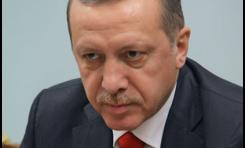 ¿Es Erdogan el único responsable de la política externa turca? -  Por Dr. Spyridon N.Litsas (BESA)