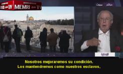 """Historiador Palestino: """"El Plan de Trump es para tratarnos como presos de Auschwitz"""""""