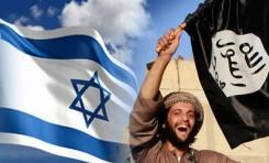 ¿Qué tan peligroso es ISIS para Israel? - Por Prof. Efraim Inbar