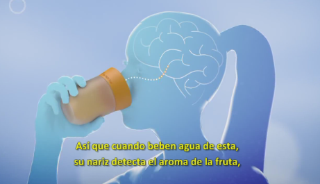 """La Taza Correcta (Israel) """"La Primera taza de agua con Sabor a Frutas"""""""