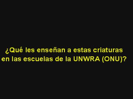 ¿Usted cree que UNWRA debe seguir existiendo?