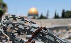 Tasa de propagación de los casos de COVID-19 en la Autoridad Palestina (AP): Actualización