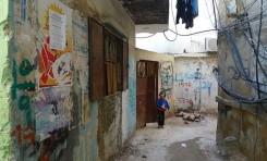 ¿Por qué los árabes odian a los palestinos? - Por Teniente Coronel (Retirado) Dr. Mordejai Kedar (BESA)