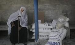 El problema de los refugiados de la ONU (y el caso palestino) - Por Erlich Kushner