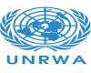 ¿Transferir las responsabilidades de UNRWA a quién? – Por Dr. Alex Joffe (BESA Center)
