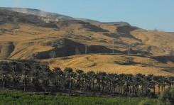 El dilema de anexarse el Valle del Jordán: Un enfoque realista -  Por el Coronel (Retirado) Dr. Raphael G. Bouchnik-Chen