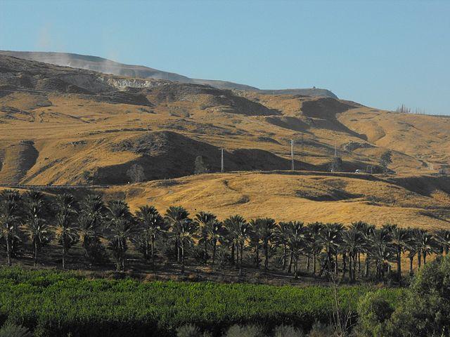 El dilema de anexarse el Valle del Jordán: Un enfoque realista –  Por el Coronel (Retirado) Dr. Raphael G. Bouchnik-Chen