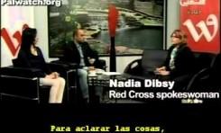 Cruz Roja: Israel nunca impidió que visitemos presos palestinos