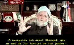 Egipto: Ministro de Confesiones Religiosas espera la destrucción de Israel