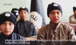 ¿Por qué escogió el Estado Islámico amenazar a China en este momento? - Por Roie Yellinek (BESA)