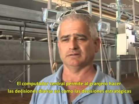 Israel: Computarizando el proceso de ordeñar