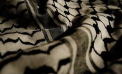 Palestinos de los que nadie dice nada - Por Jaled Abu Toameh