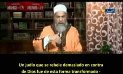 Los judíos no son descendientes de los Monos y Cerdos