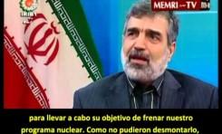 Portavoz de la agencia nuclear iraní: Los compromisos de Irán son temporales