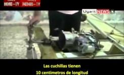 Rebeldes sirios construyen su propio avión